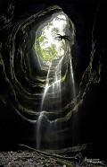Neversink Cave Preserve