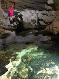 Sinking Cove Cave Preserve