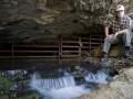 Steward Spring Cave Preserve